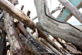 Aberdyfi_Driftwood_Preview