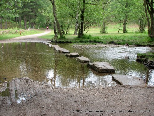 Stepping Stones On Cannock Chase Preview