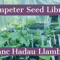 Lampeter Seed Library